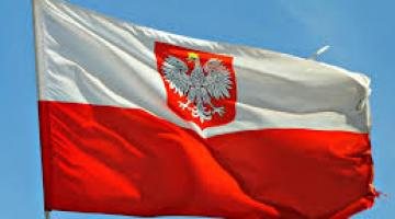 Polish Business Go Global